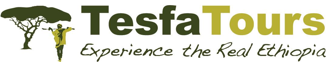 Tesfa Tours
