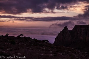 Curtesy of Tash McCarroll, Low cloud around Erar, on a Tesfa Trek