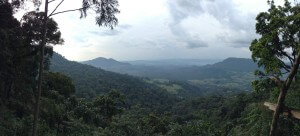 Vista across the forest in Bench Maji