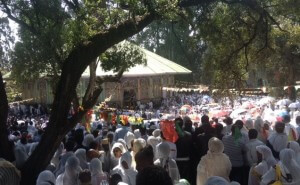 Bale Wold church in Addis, crowds gather to see the Tabot