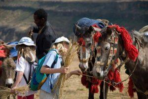 Kids enjoy riding (& feeding) horses on the trek